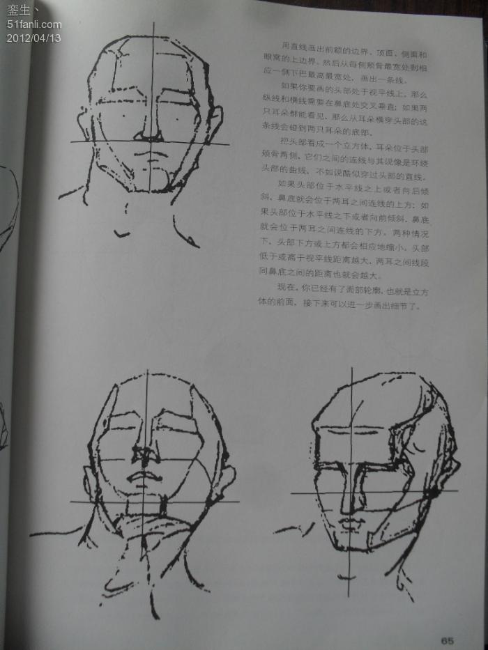 美术生必备 伯里曼人体结构绘画教学