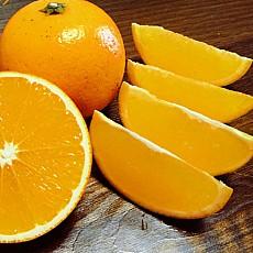 现摘湖南麻阳冰糖橙5斤